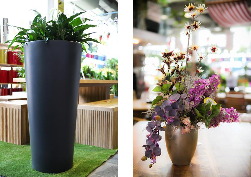 pots-blog-plantscapes