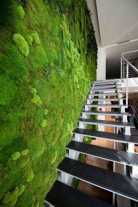 AD Moss Walls Green Interior Design Trend 04