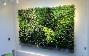 living wall project 1080x675 1