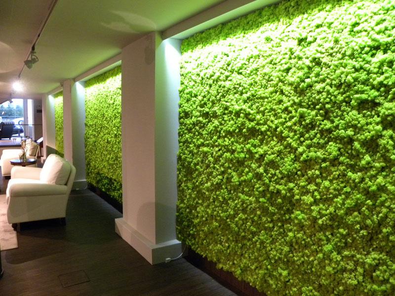 moss-wall-installation