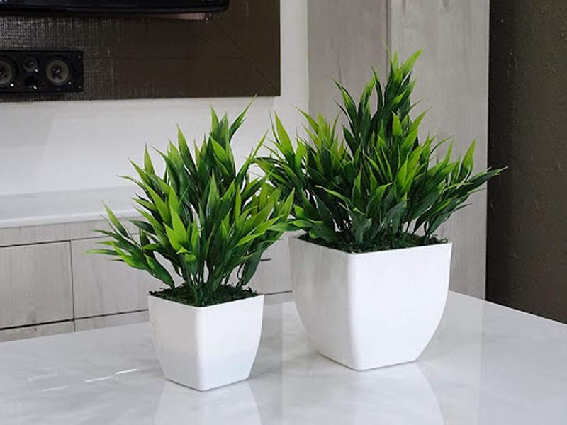 artificial-plants-plantscapes