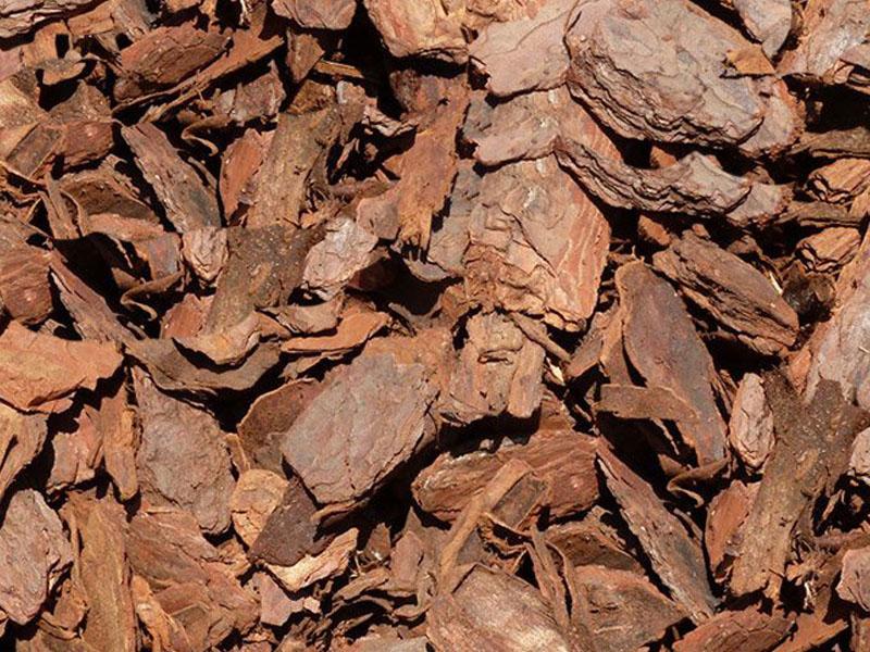 bark-mulch-plantscapes