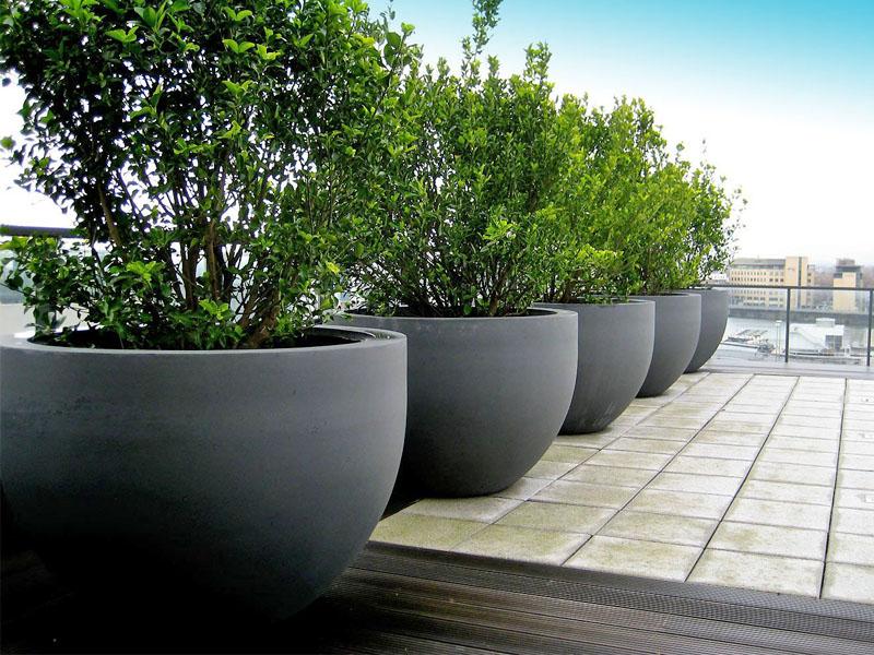 huge-pot-outdoor