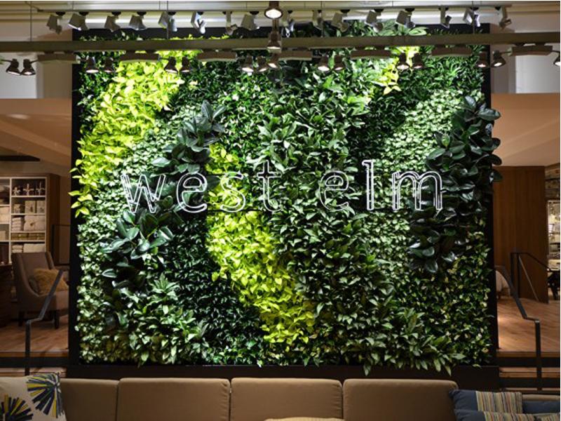 West-elm-green-wall