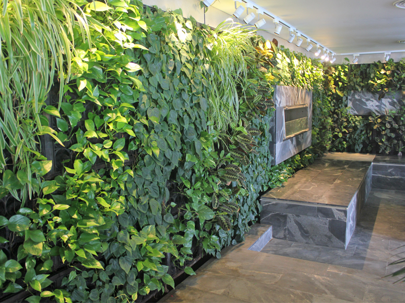 green-wall-project
