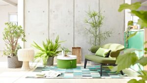 plantscapes-indoor-plants-maintenence